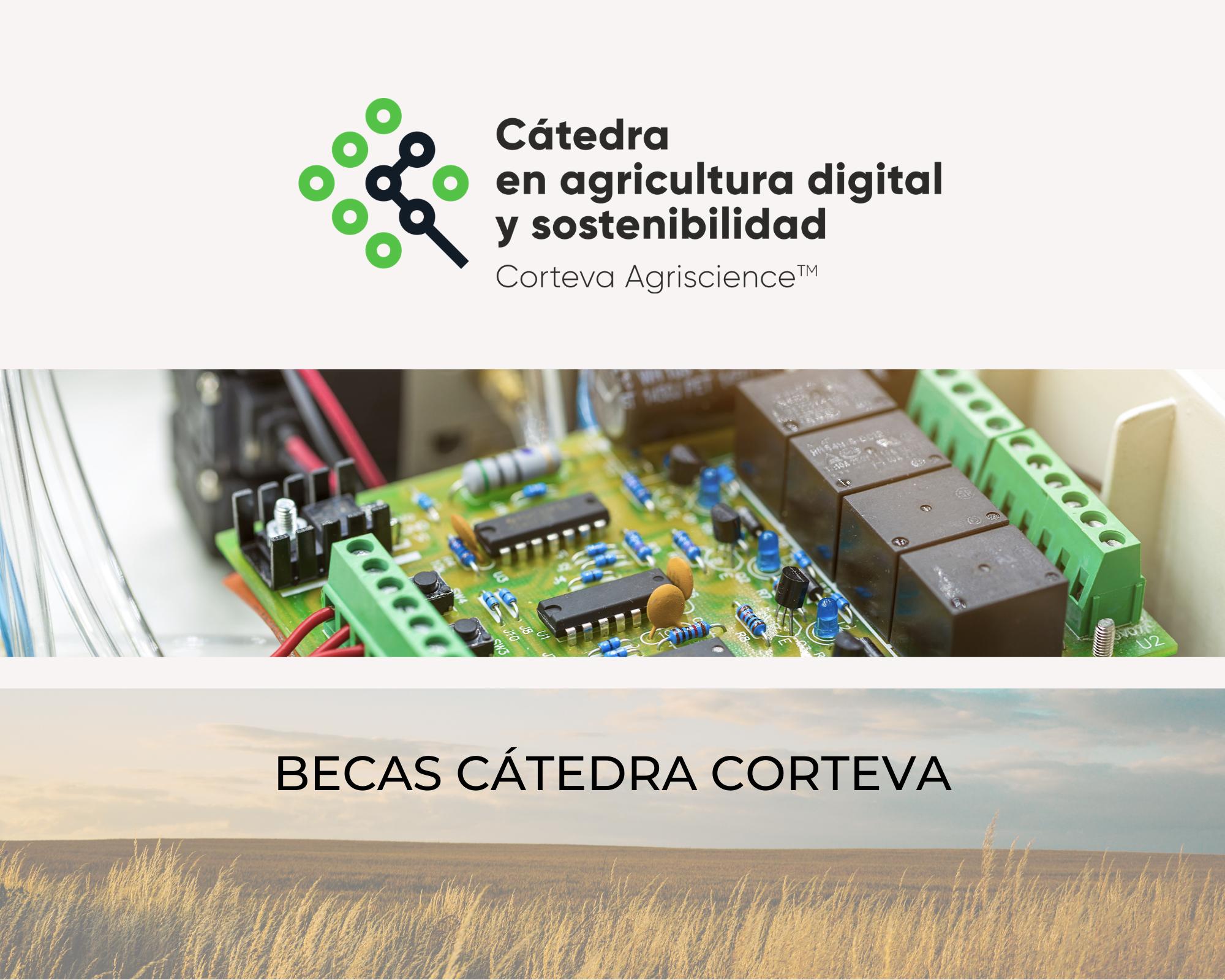 BECAS CÁTEDRA CORTEVA